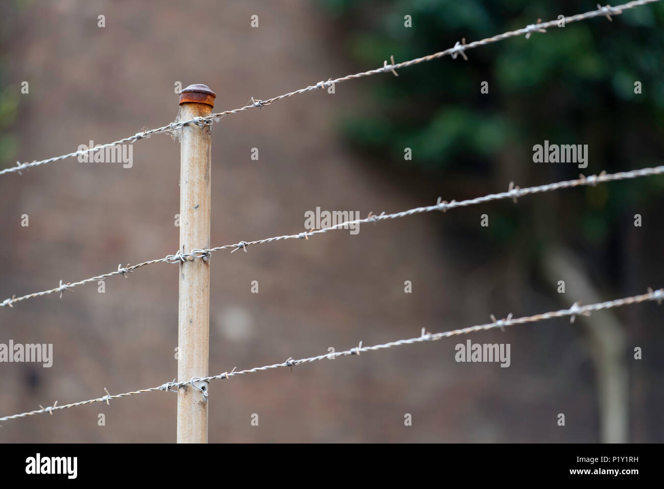 A rusted barbed wire fence still secures an abandoned factory in Sydney, Australia - Stock Image