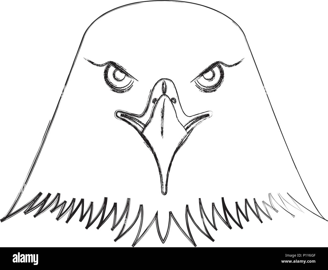 American Bald Eagle Head Vector Illustration Design