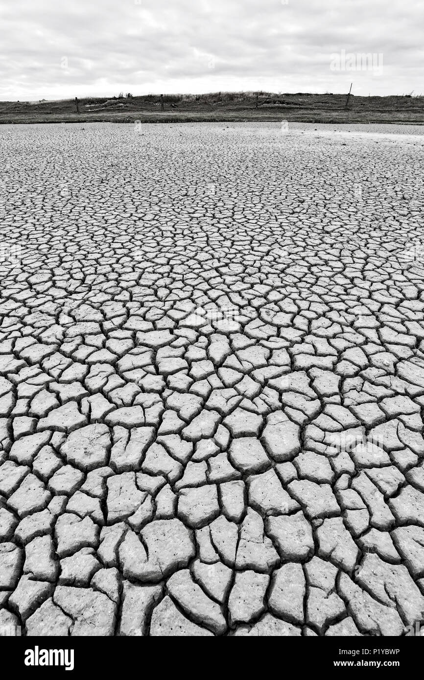 Normandy. Manche. Montmartin on Sea. Ground cracked in seaside because of the heat wave 2015. Image Black and White. - Stock Image