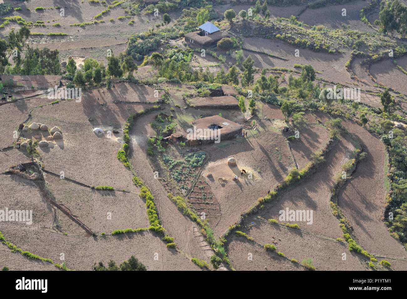 Ethiopia, Tigray area, aerial view of a landscape of traditional farms in the middle of cultivated fields - Stock Image