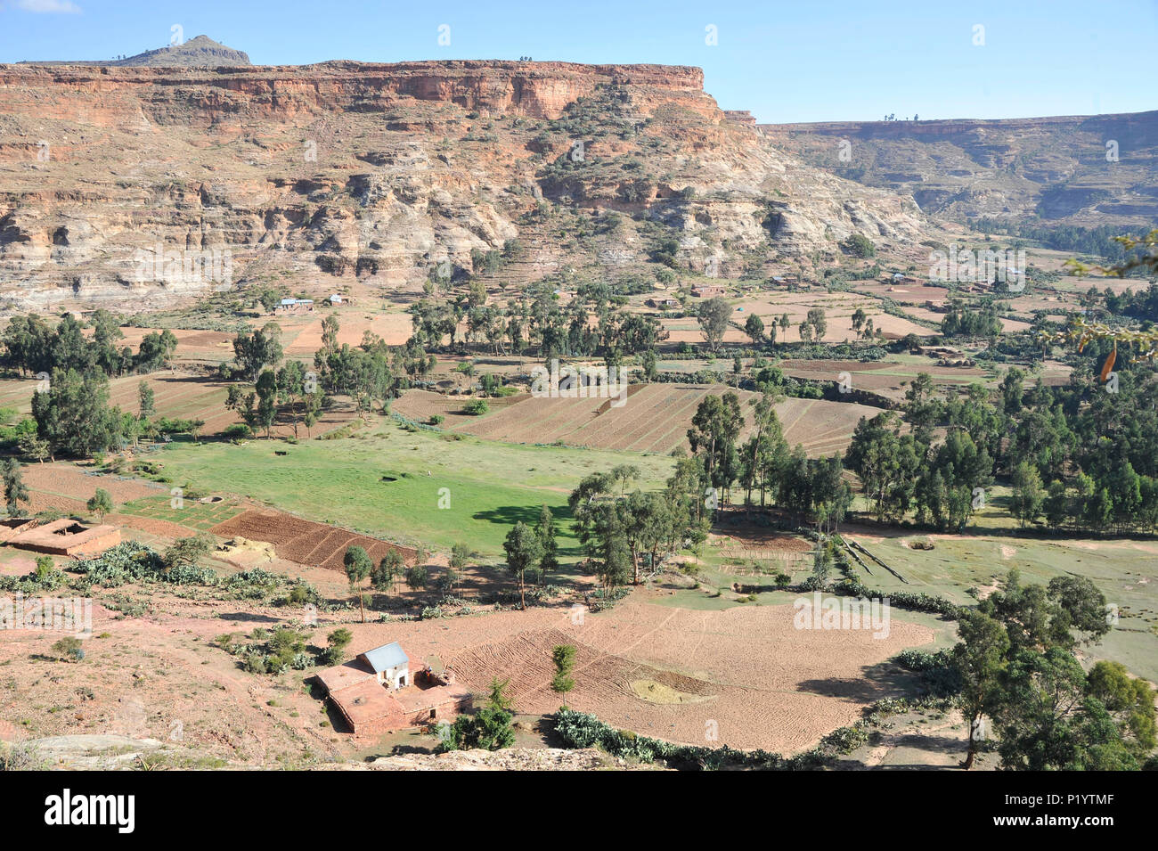 Ethiopia, Tigray area, spectacular scenery of arid mountains and cultivated plateaus - Stock Image
