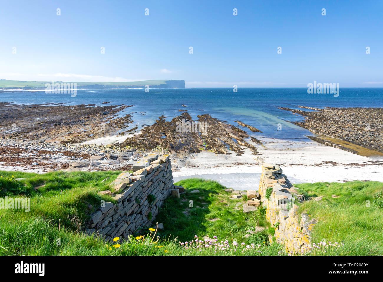 Birsay Bay, Birsay, Mainland, Orkney Islands, Northern Isles, Scotland, United Kingdom - Stock Image