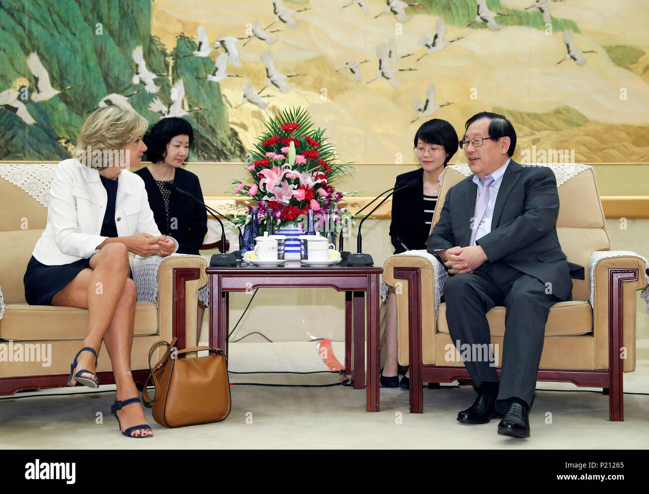 Beijing, China. 13th June, 2018. Wan Gang (R front), vice chairman of the National Committee of the Chinese People's Political Consultative Conference, meets with Valerie Pecresse, president of the regional council of Ile de France, in Beijing, capital of China, June 13, 2018. Credit: Ding Lin/Xinhua/Alamy Live News - Stock Image
