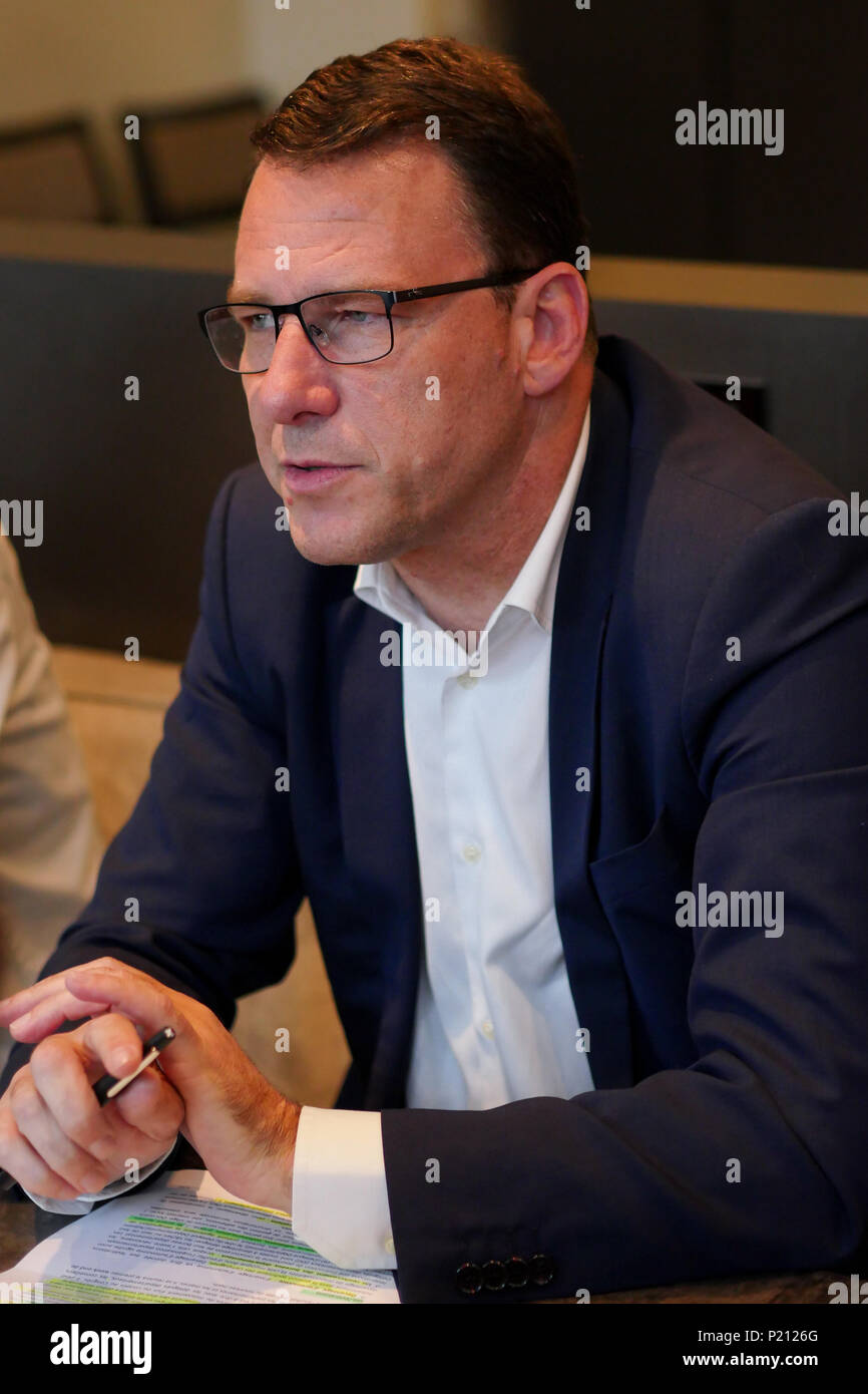 """Lyon, France, June 13th 2018: Jean-Lin Lacapelle, Delegate of the """"Rassemblement National (in English: National Rally), is seen as he attends a press conference held in Lyon (Central-Eastern France). National Rally is the new name recently chosen (by French National Front (FN) members and validated by its President, Marine Le Pen. Credit Photo: Serge Mouraret/Alamy Live News Stock Photo"""
