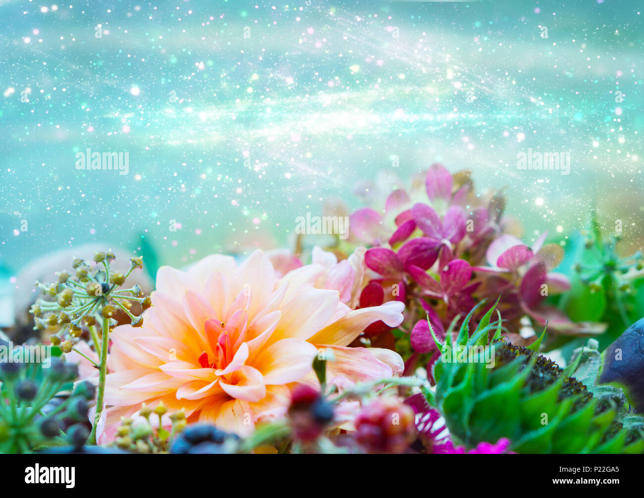 Greetings card, flower decoration with dahlia and hydrangea, Bokeh background - Stock Image