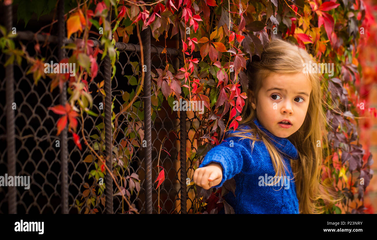 986b3f26bb22 little girl in stylish and fashionable clothes on a beautiful background of autumn  wild grapes, red autumn leaves