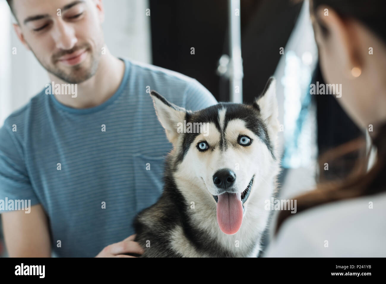 young man with husky and female veterinarian in clinic Stock Photo
