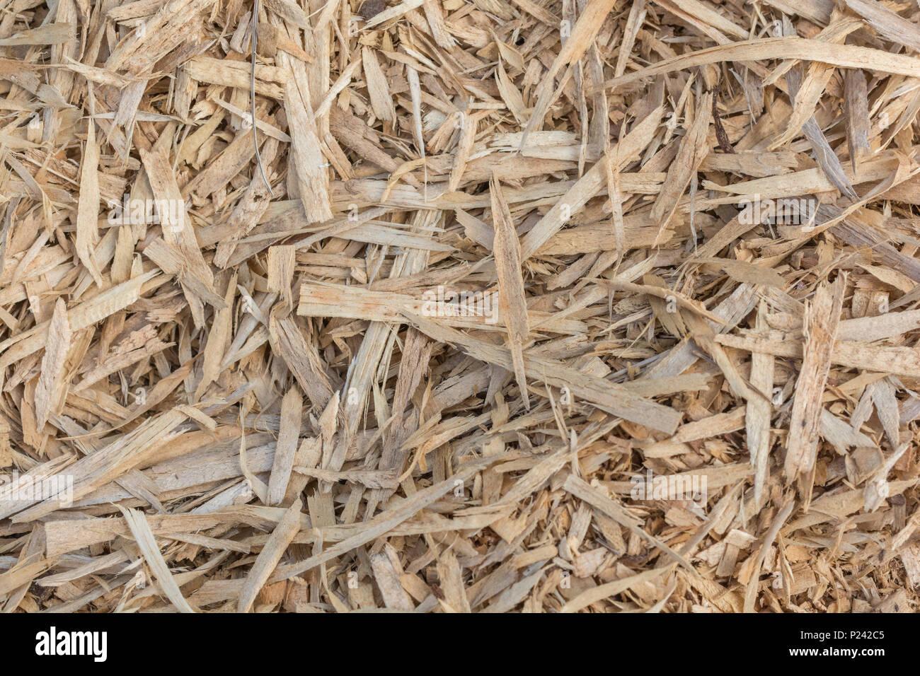 Needle haystack stock photos