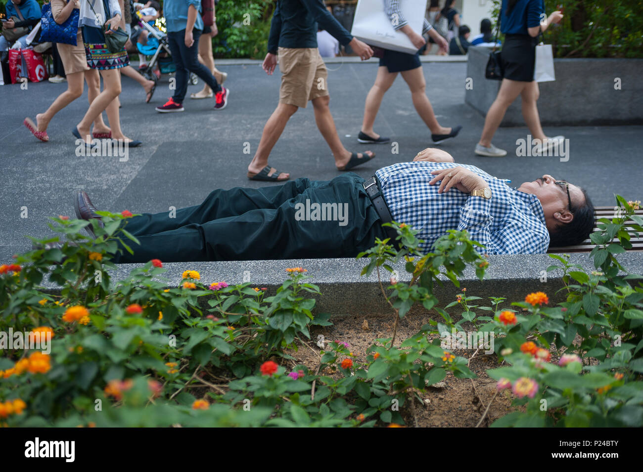 Singapore, Republic of Singapore, a man slept on a Parbank - Stock Image