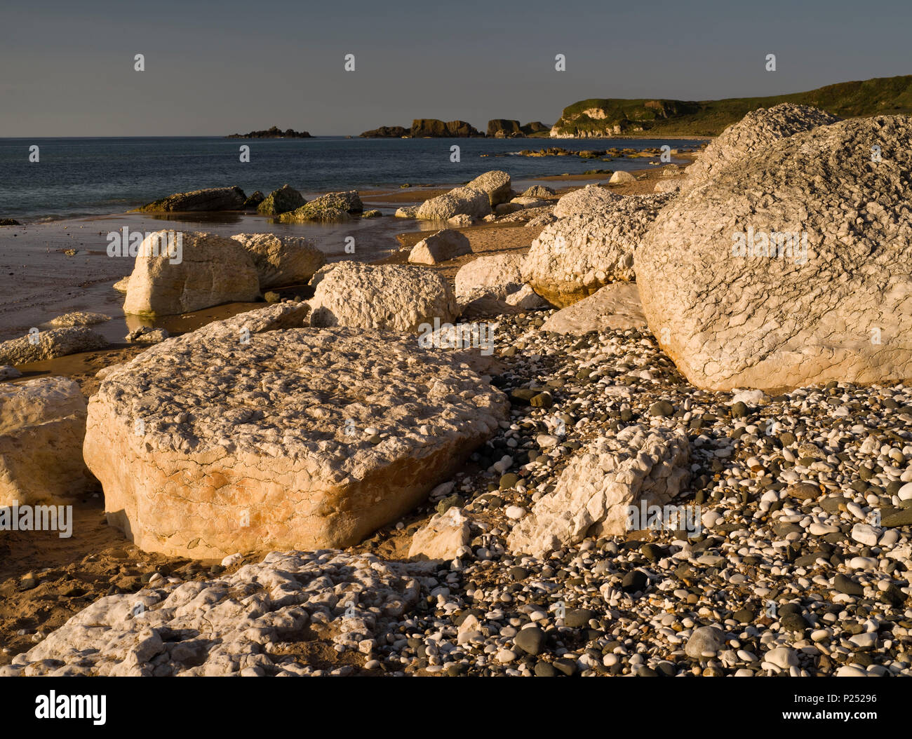 Northern Ireland, Antrim, Causeway Coast, sandy beach with white mussel limestones in the White park Bay - Stock Image