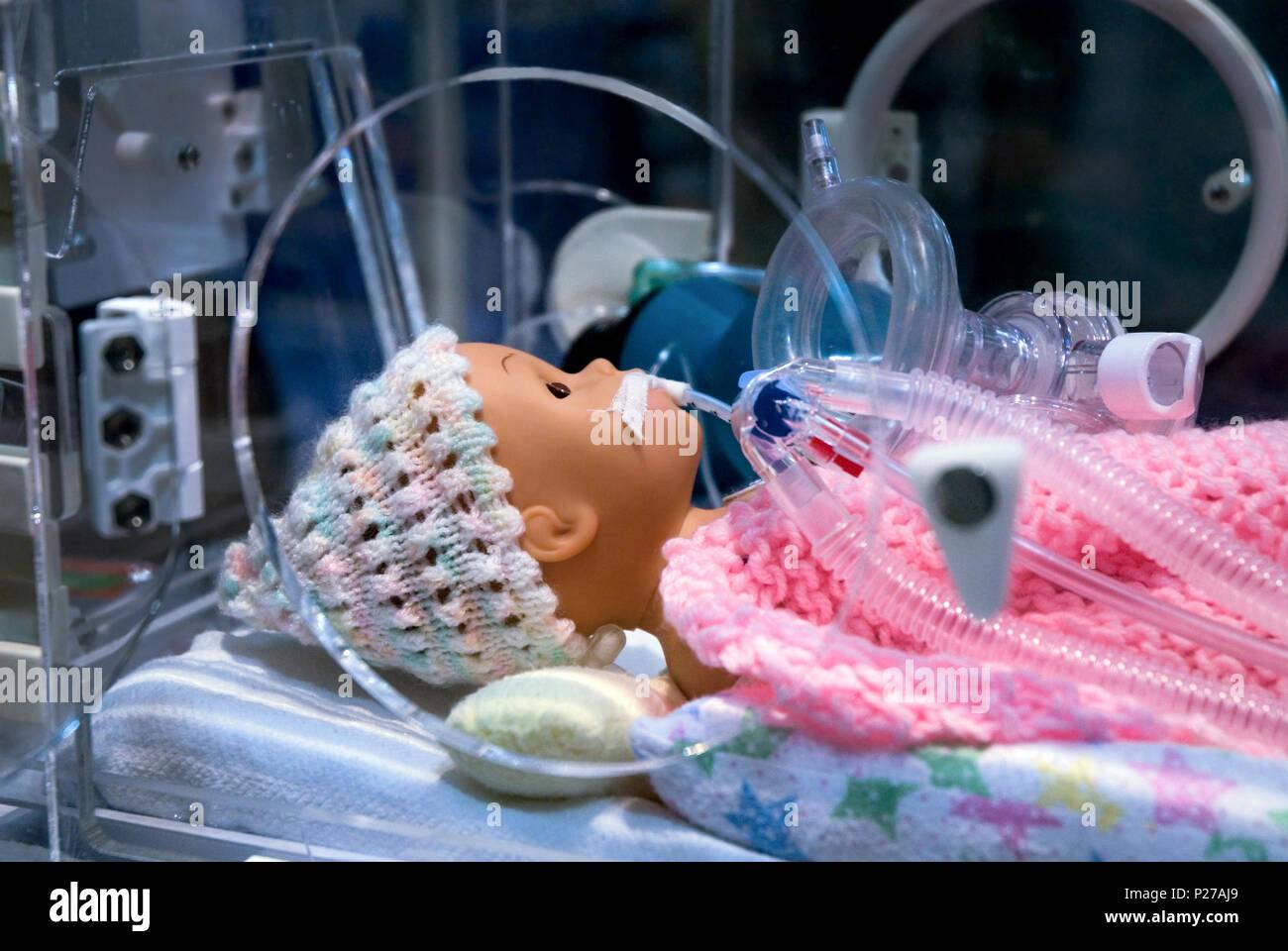 Ambulance Display of Emergency Premature Infant Respiratory Mannequin - Stock Image