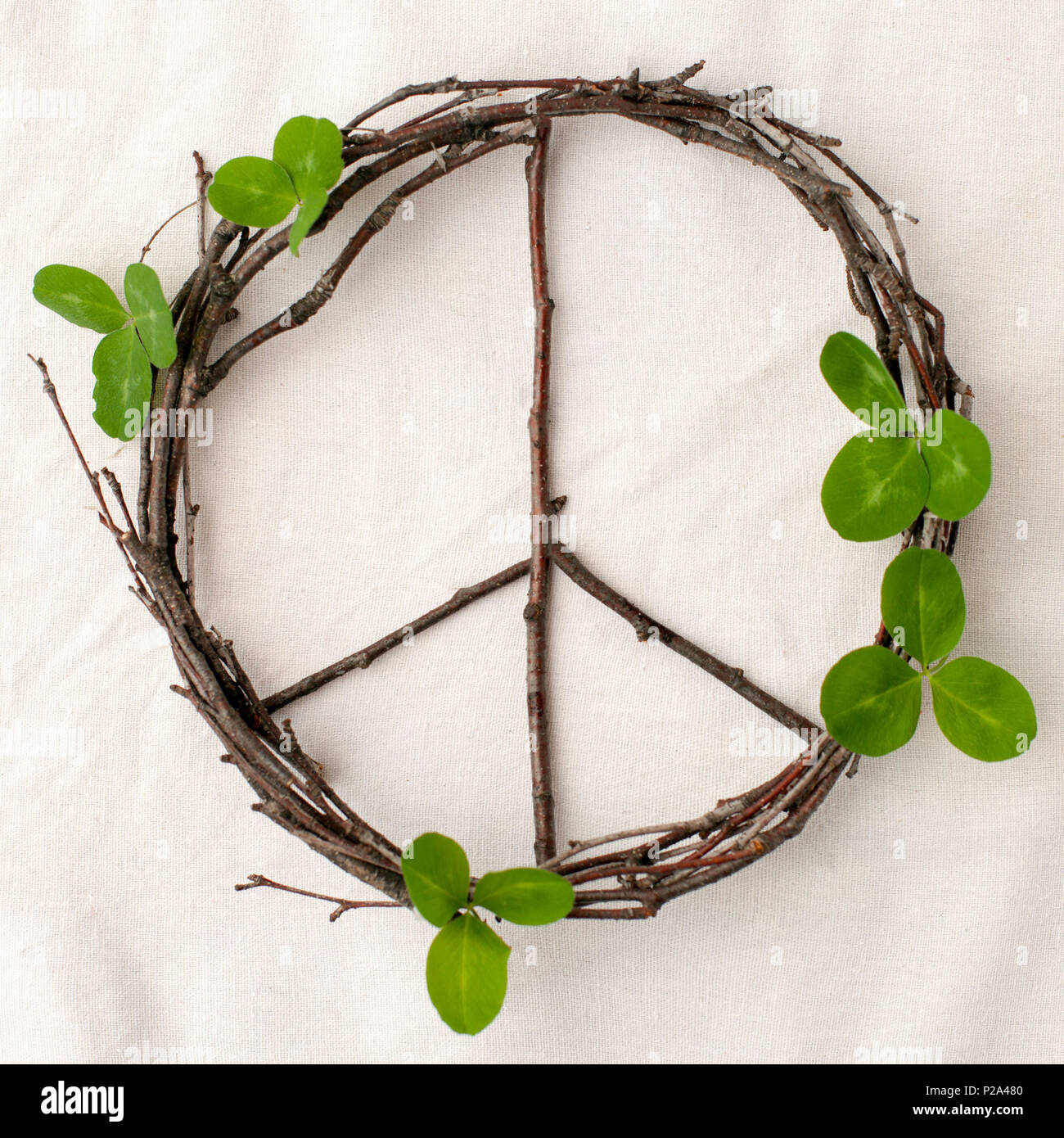 Peace Sign Symbol Of Natural Material Flowers Leaves Wooden