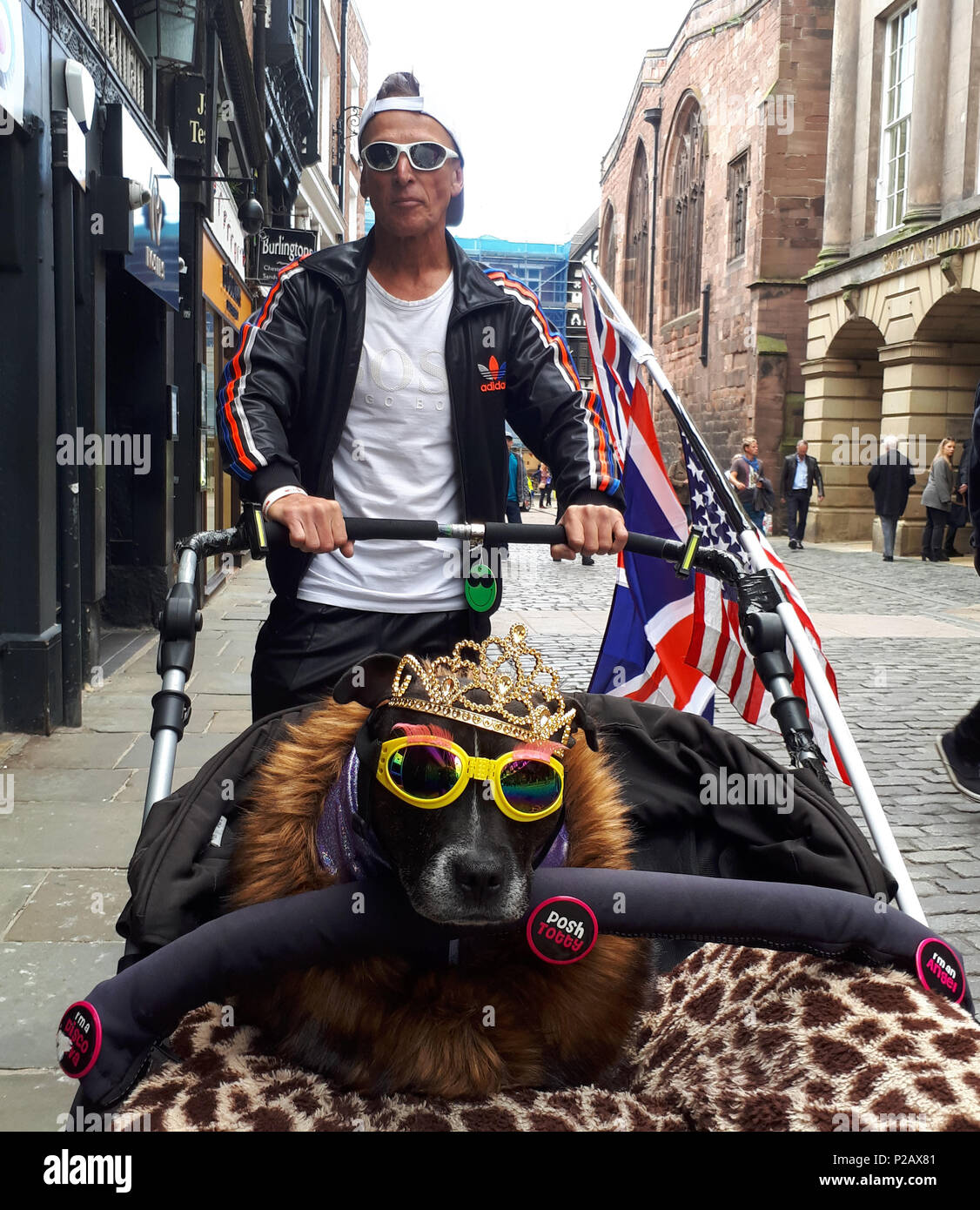 A man takes his dog, adorned with Tiara and sunglasses to see HM Queen Elizabeth II and Meghan Markle, Duchess of Sussex, visit Chester on their first public engagement together. Chester, Cheshire, on June 14, 2018. Credit: Paul Marriott/Alamy Live News Stock Photo