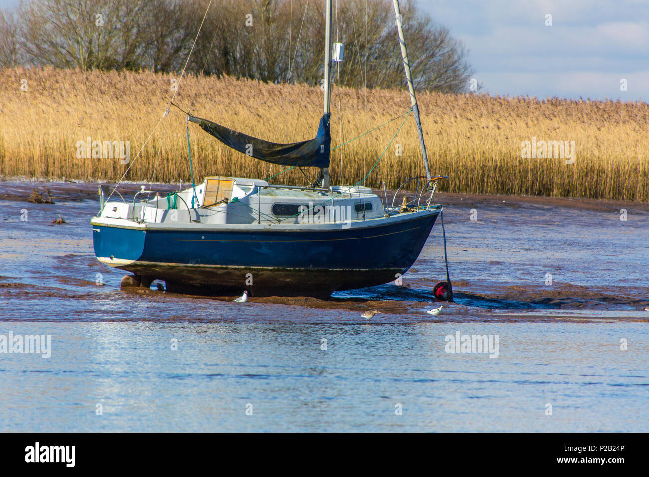A modern yacht in need of cleaning at its permanent mooring on the River Exe near Topsham, Devon, England, UK - Stock Image