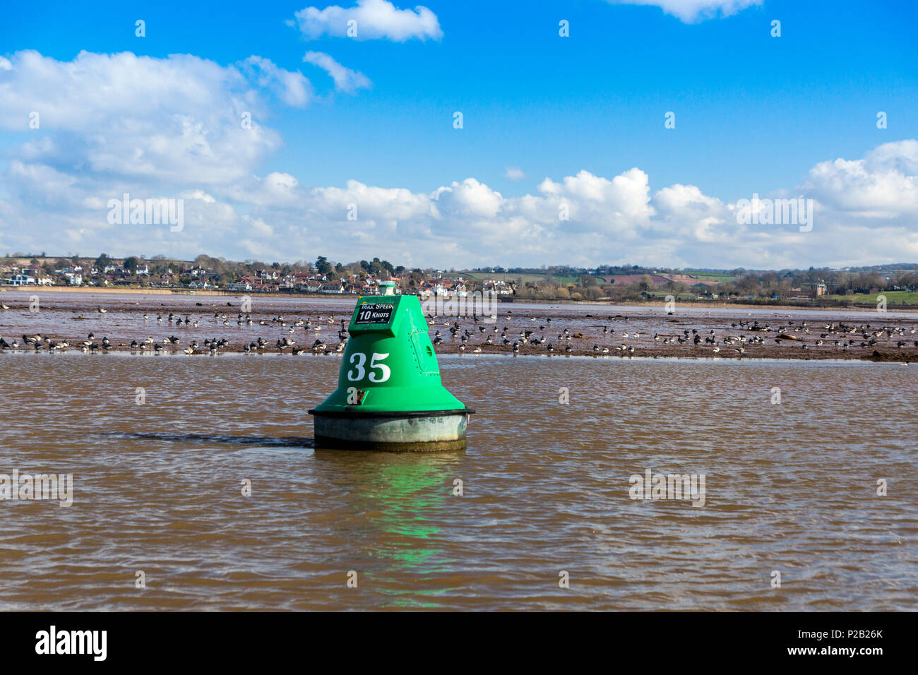 An assortment of wading birds feeding on the mudflats of the River Exe near Exton, Devon, England, UK - Stock Image