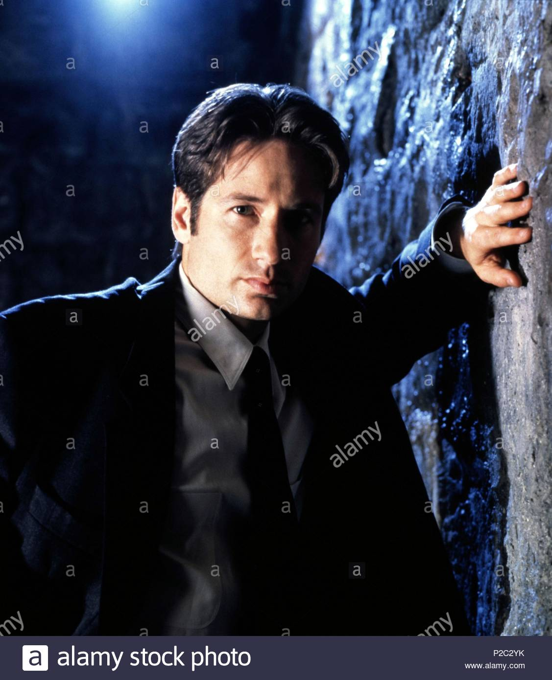 Original Film Title: THE X FILES.  English Title: THE X FILES.  Film Director: CHRIS CARTER; ROB BOWMAN; DAVID NUTTER.  Year: 1993.  Stars: DAVID DUCHOVNY. Credit: FOX FILMS / SELIGER, MARK / Album - Stock Image