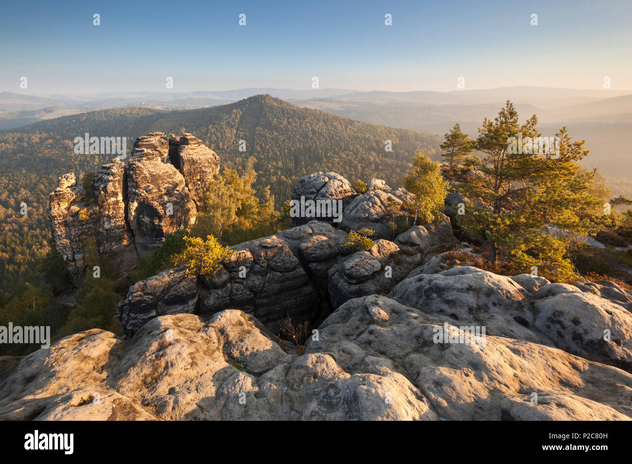 View towards Muellerstein and the Hohe Liebe in the early morning sun with rocks and pine trees in foreground, National Park Sax - Stock Image