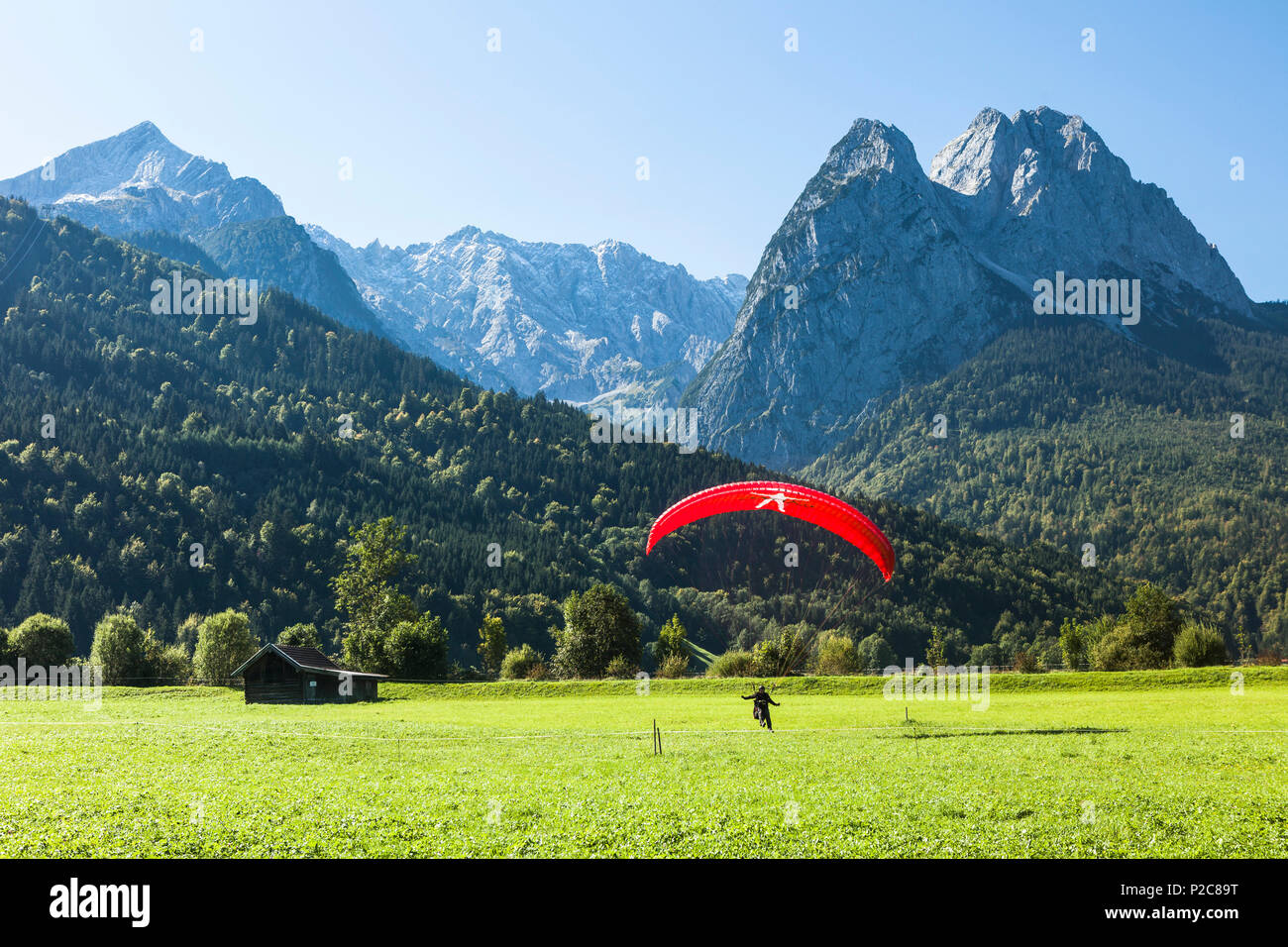 Paraglider landing on meadow overlooking Alpspitz, Jubilaeums Ridge and Waxenstein, Garmisch-Partenkirchen, Bavaria, Germany Stock Photo