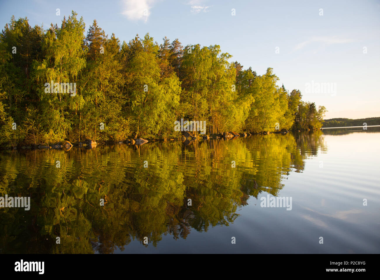 Golden reflection. Lake Kukkia, Luopioinen, Finland.järvimaisema Stock Photo