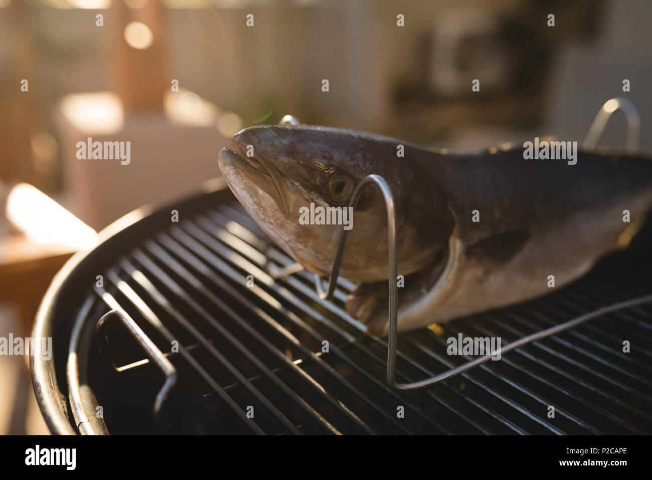 Fish on a barbeque in the backyard - Stock Image