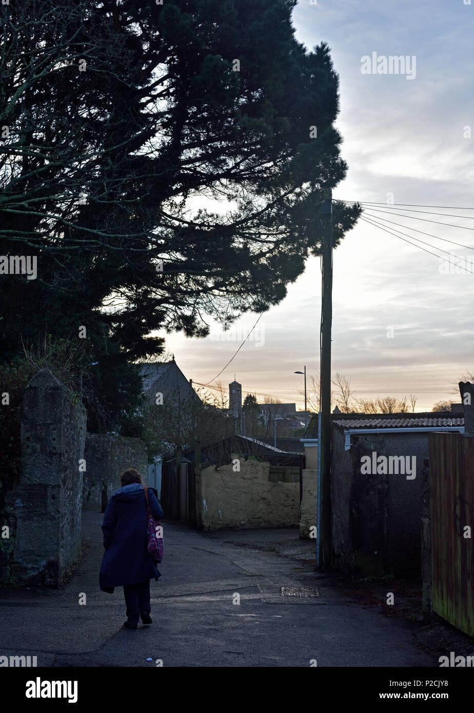 Cornish Lane Stock Photos Amp Cornish Lane Stock Images Alamy