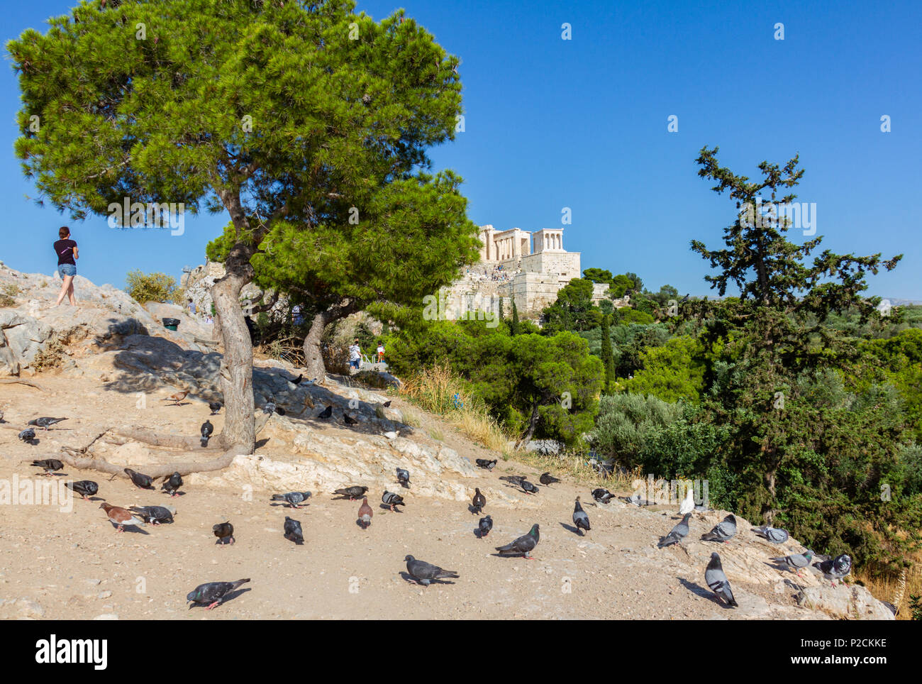 Scenic view of tourist gazing towards the the rock of the Acropolis of Athens in Greece with pigeons in the foreground - Stock Image