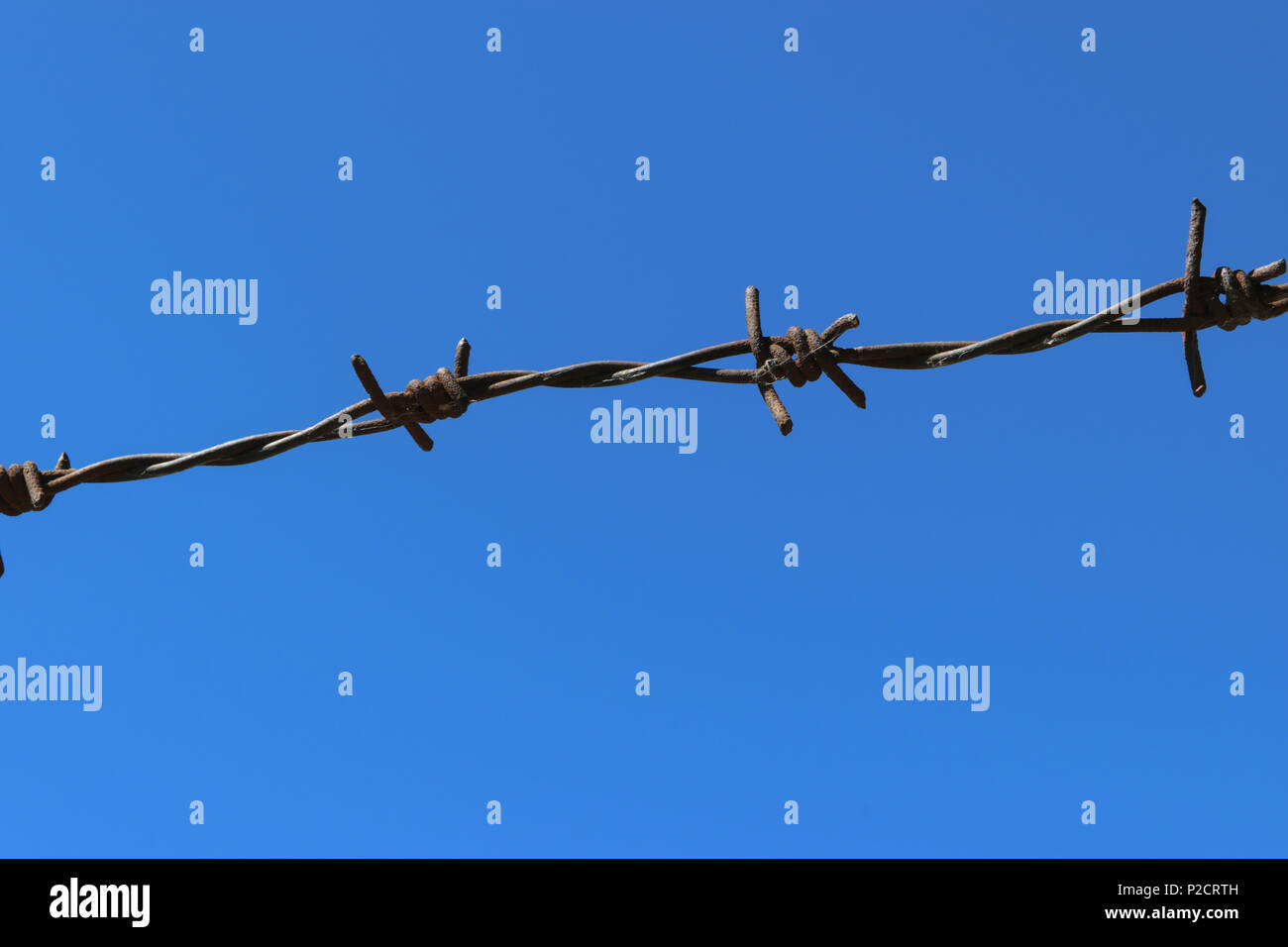 Rusty barbed wire fence in clear blue sky background - Stock Image