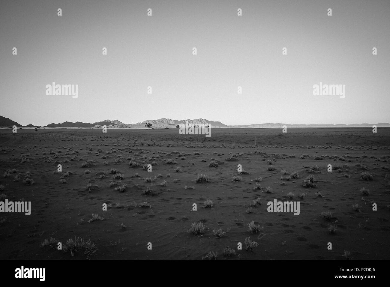 Grainy old style effect image typically  dry flat landscape in Namibia in monochrome - Stock Image