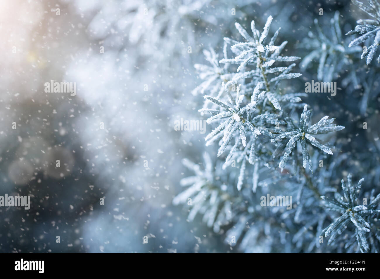 Winter background with copy space - Stock Image