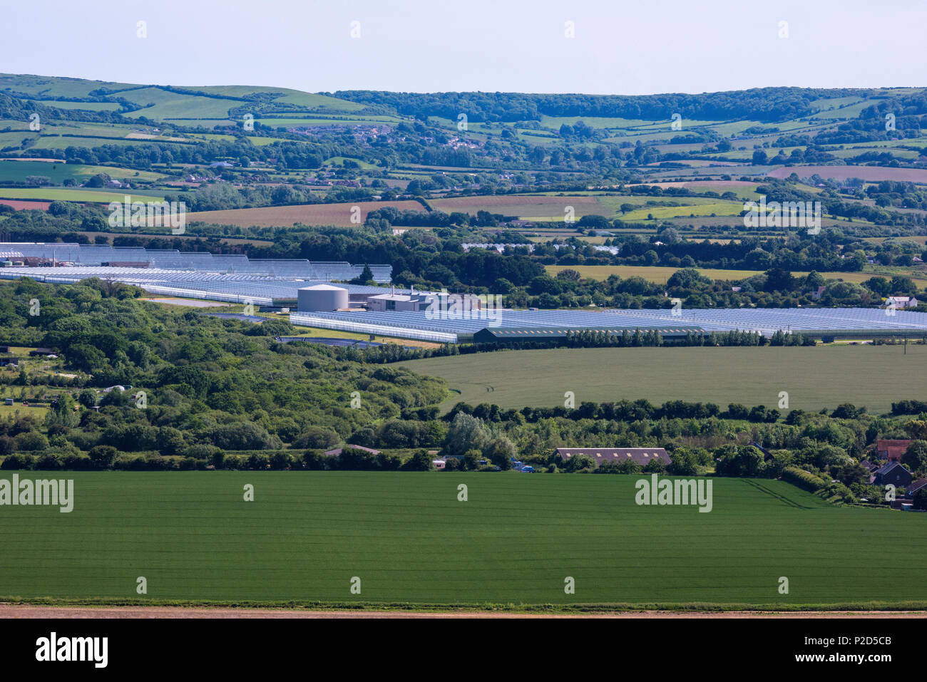 large commercial greenhouses at arreton on the isle of wight. industrial scale glasshouses in the arreton valley close to sandown in sheltered valley. - Stock Image