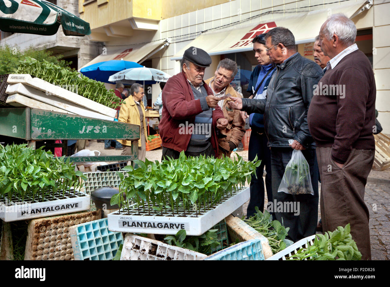 Plant stall, Market in front of the market stall, Silves, Algarve, Portugal - Stock Image