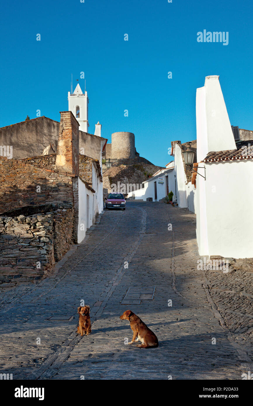 Dogs on a cobbled street, Monsaraz, Alentejo, Portugal - Stock Image