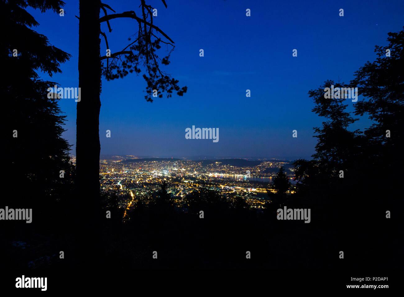 Zurich at night, View from the Uetliberg, Zurich, Switzerland - Stock Image