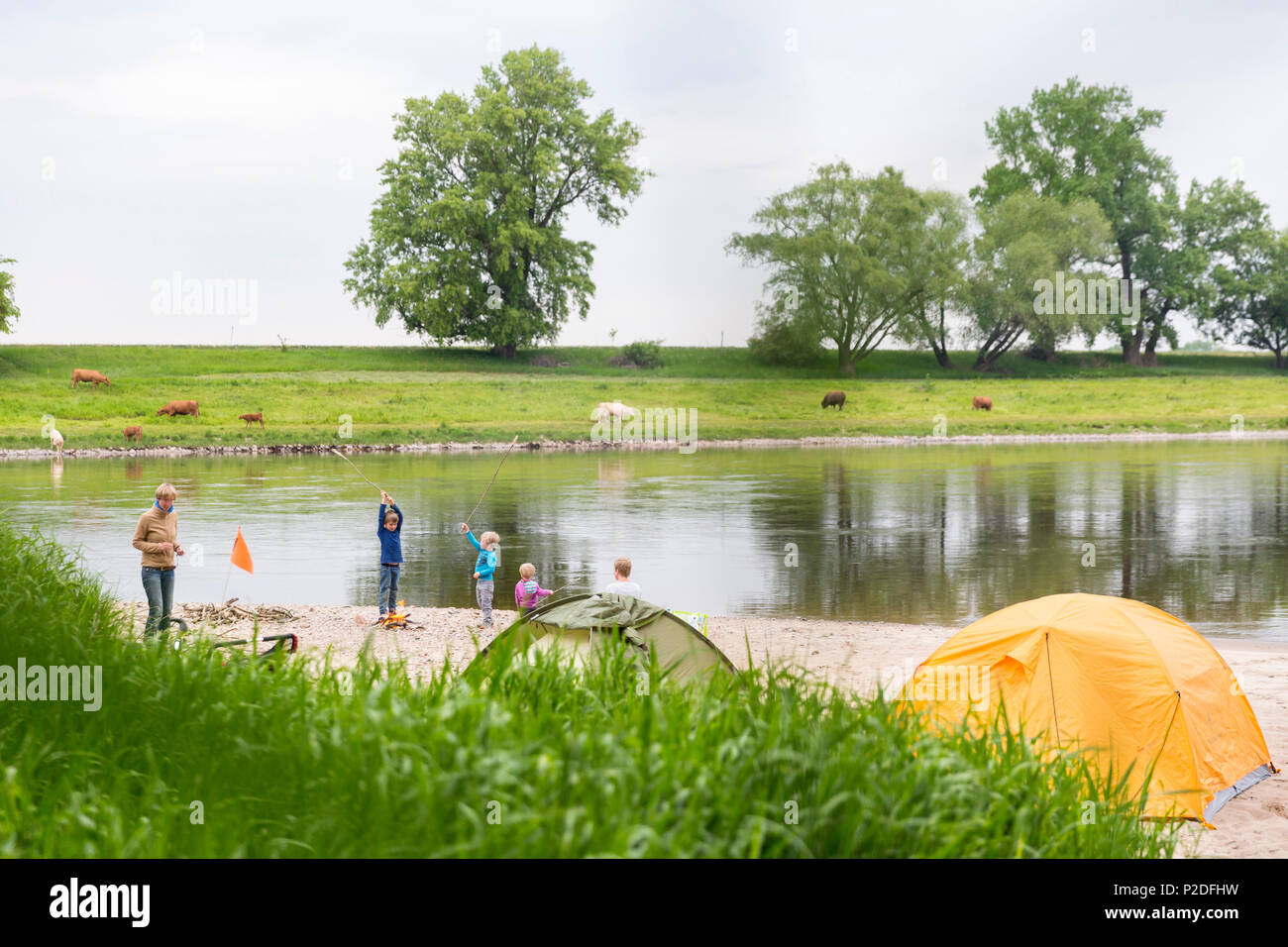 Camping along the river Elbe, Family bicycle tour along the river Elbe, adventure, from Torgau to Riesa, Saxony, Germany, Europe Stock Photo