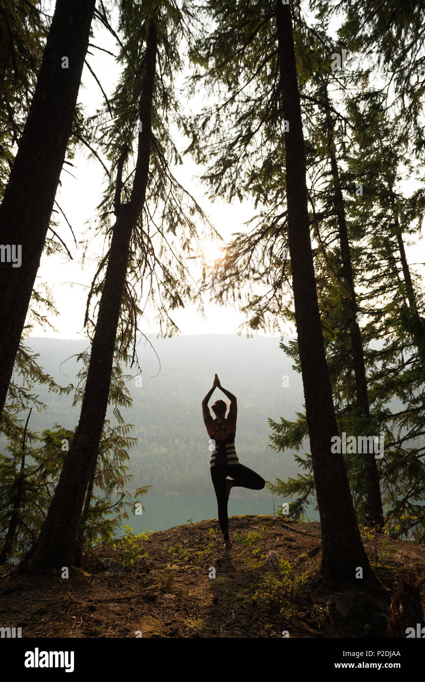 Fit woman performing stretching exercise in a lush green forest - Stock Image