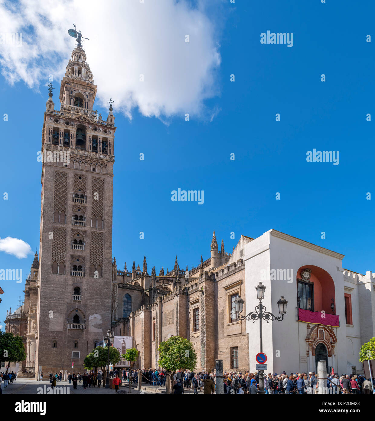 Tourists queuing outside the Giralda tower and Cathedral, Seville ( Sevilla ), Andalucia, Spain - Stock Image