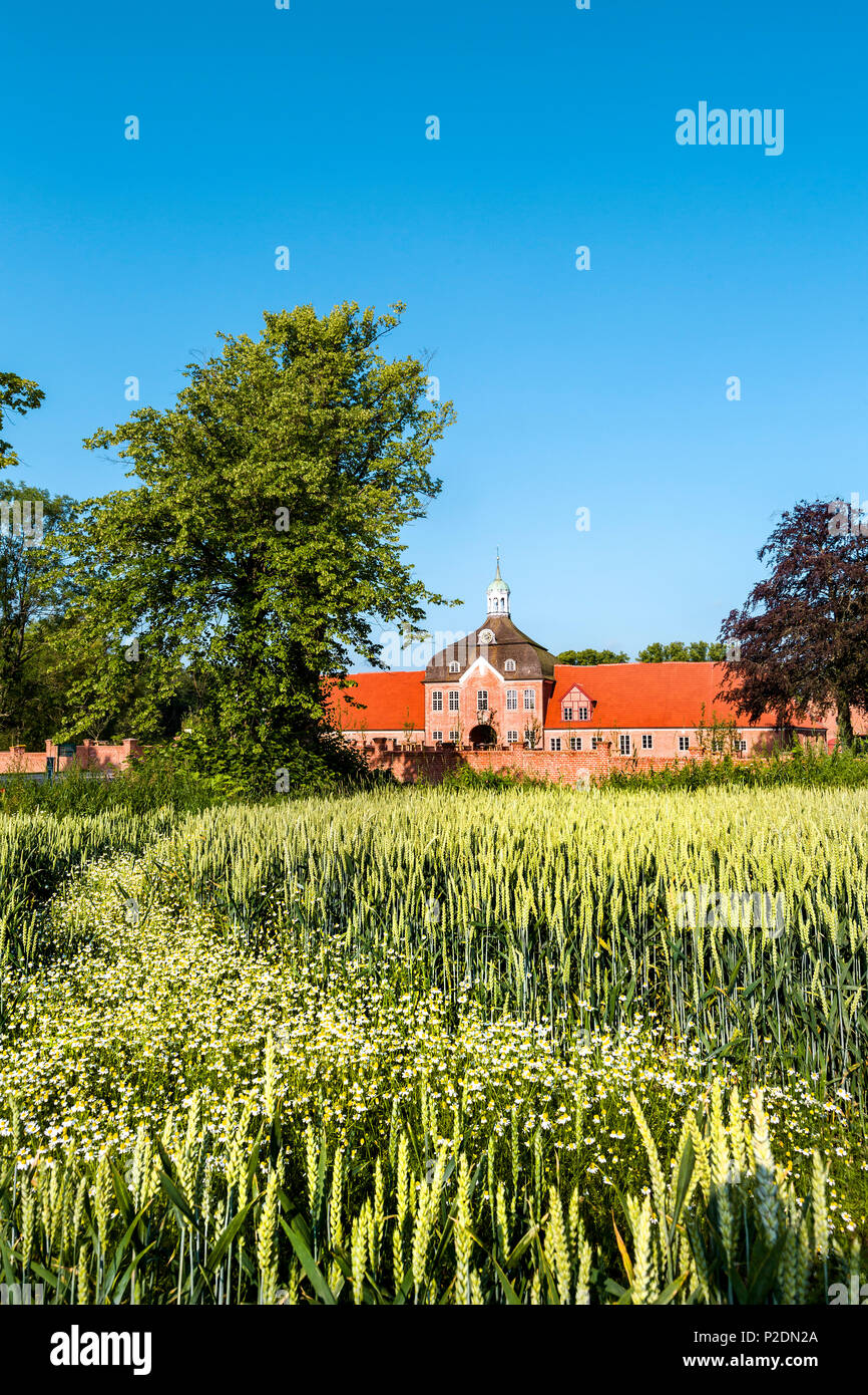 Manor house Hasselburg, Altenkrempe, Baltic Coast, Schleswig-Holstein, Germany - Stock Image