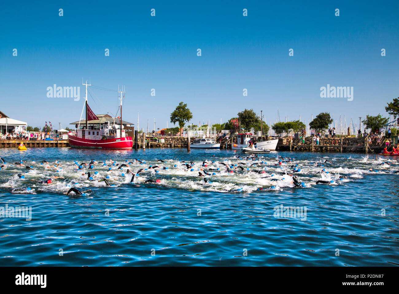 People swimming in the harbour, Triathlon, Heiligenhafen, Baltic Coast, Schleswig-Holstein, Germany - Stock Image