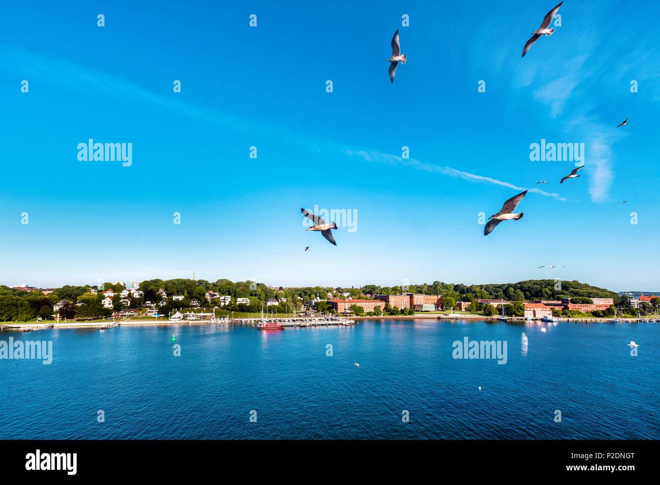 View towards parliament, Kiel, Baltic Coast, Schleswig-Holstein, Germany - Stock Image