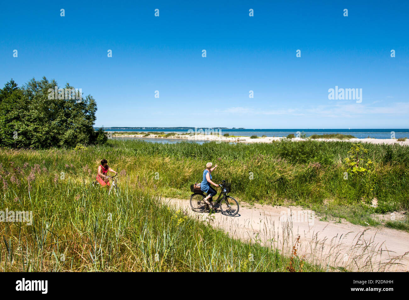 Cycle path along Kiel fjord, Baltic Coast, Schleswig-Holstein, Germany - Stock Image