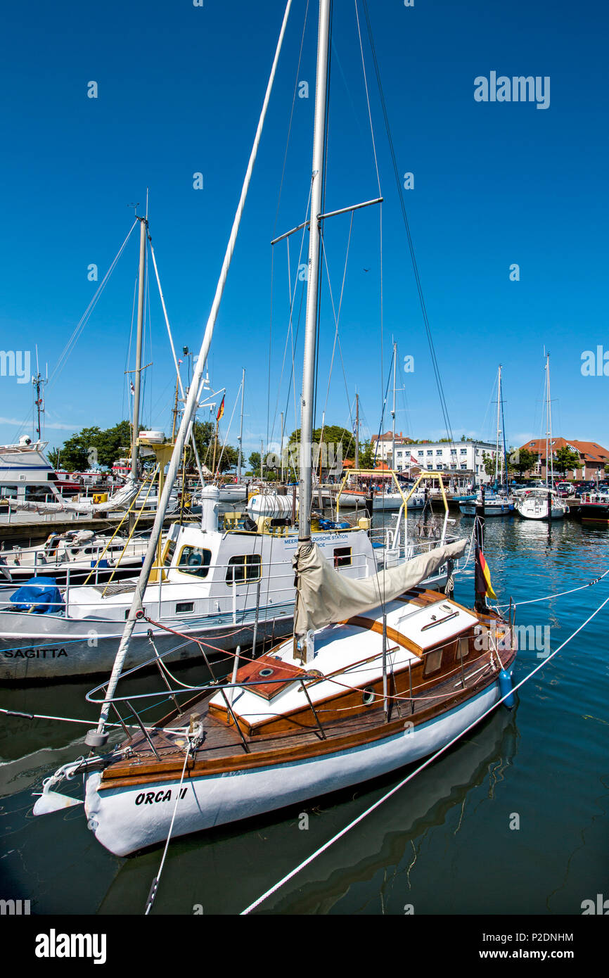 Marina, Laboe, Baltic Coast, Schleswig-Holstein, Germany - Stock Image