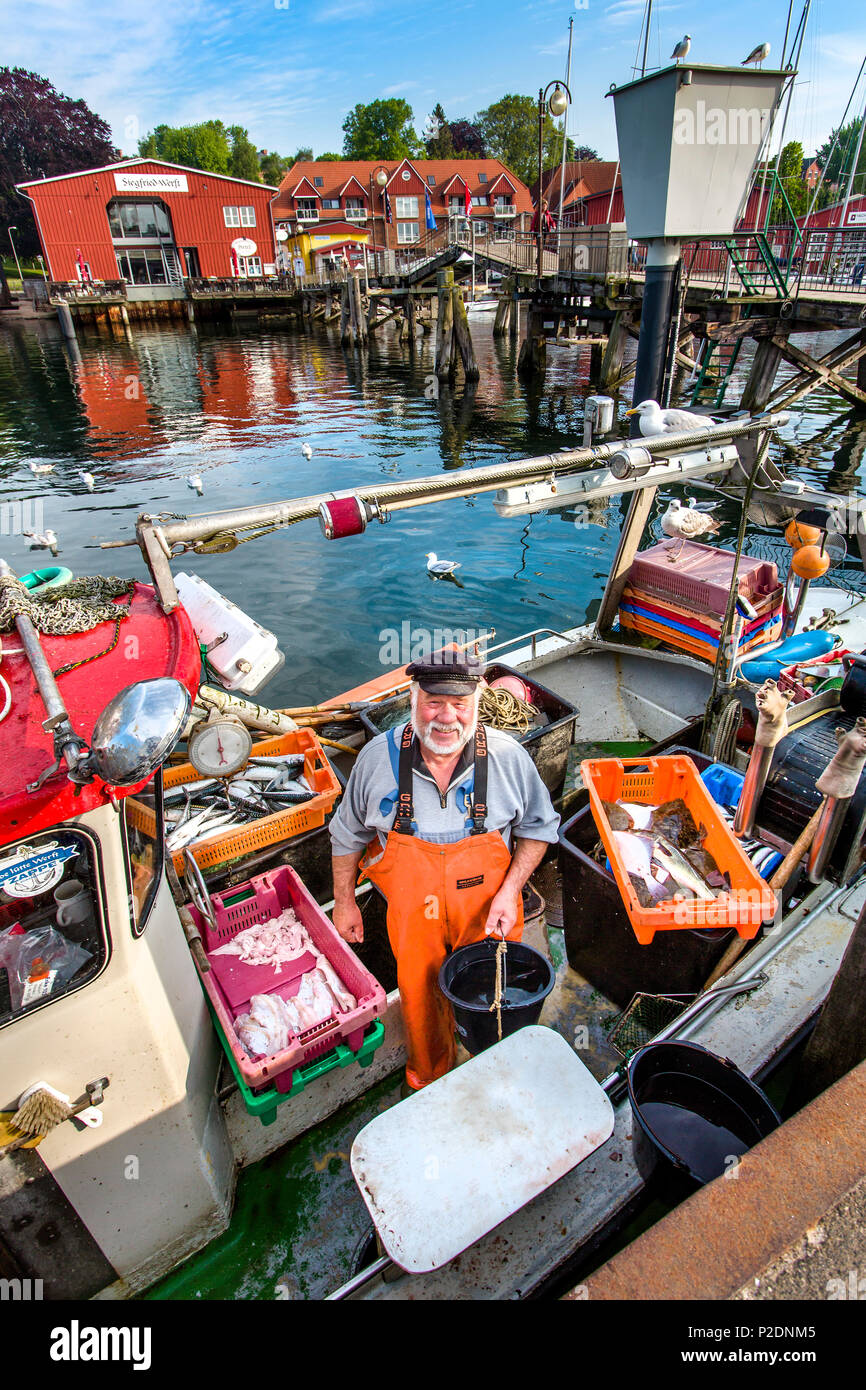 Fisherman selling fish from boat, Eckernfoerde, Baltic Coast, Rendsburg-Eckernfeorde, Schleswig-Holstein, Germany - Stock Image