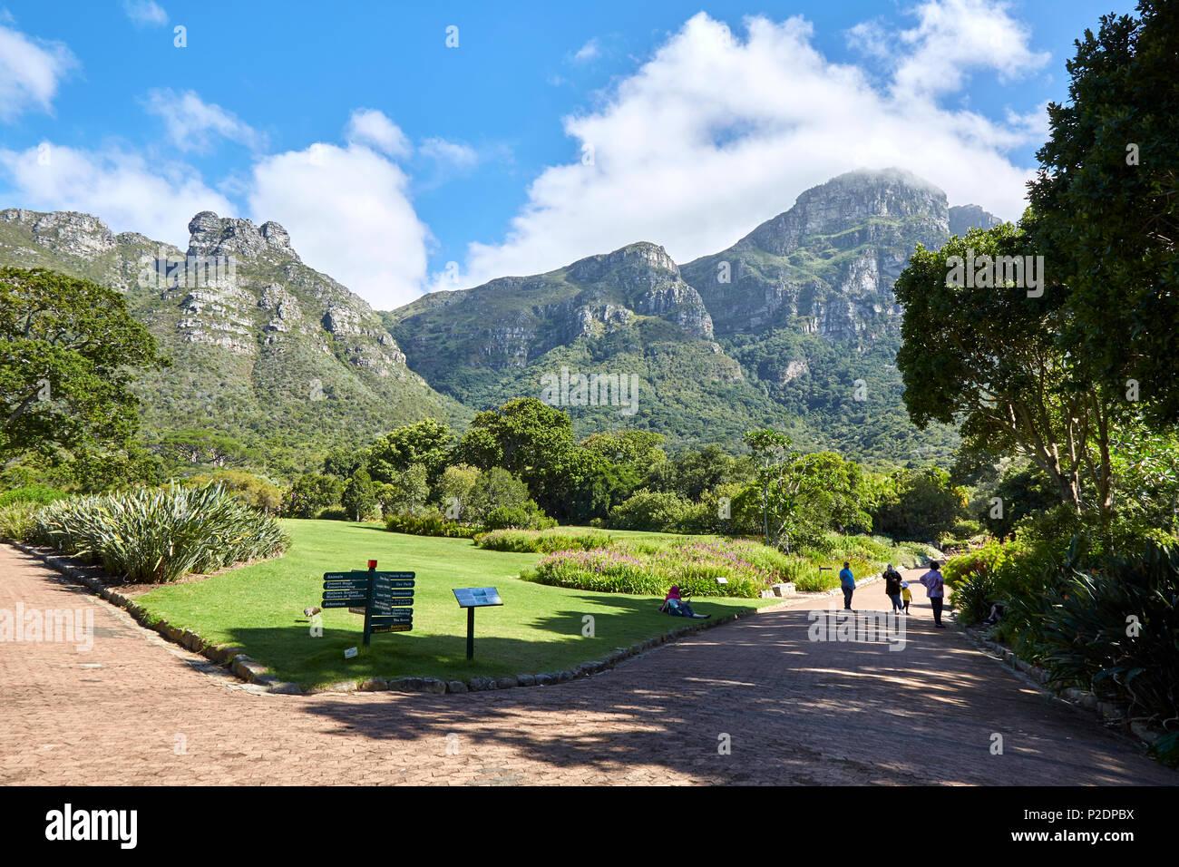 Kirstenbosch Botanical Gardens, Cape Town. - Stock Image
