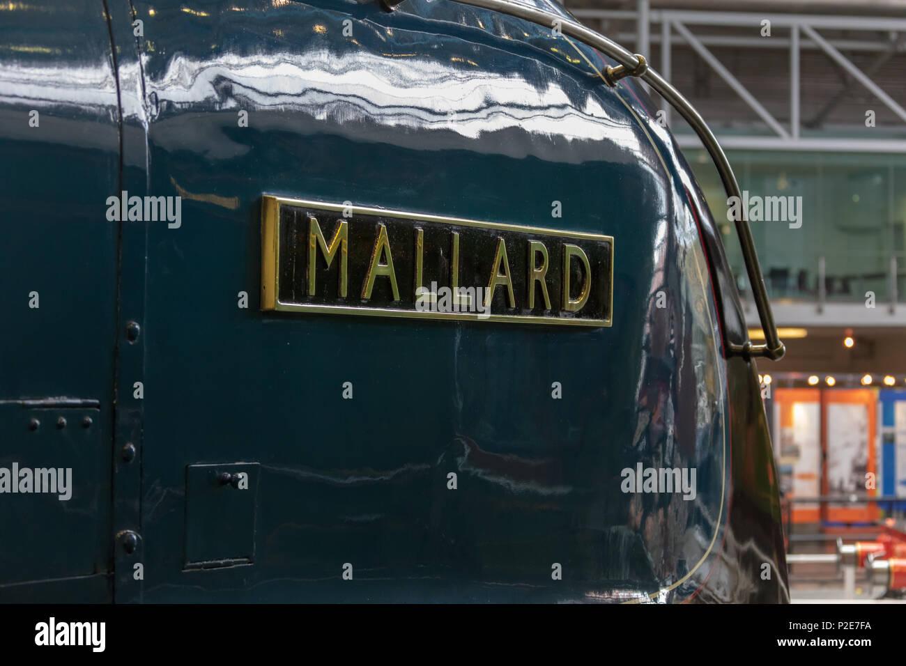 Mallard Train York - Stock Image