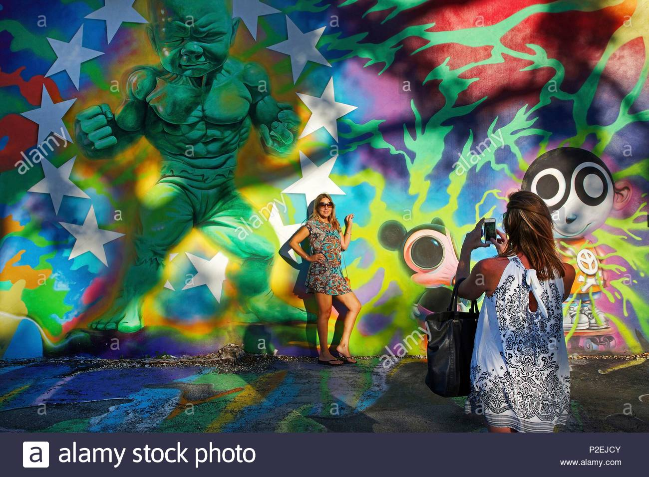 united states florida miami restaurant wynwood kitchen bar shooting in front of a painted wall by the street artist ron english in the courtyard of - Wynwood Kitchen And Bar