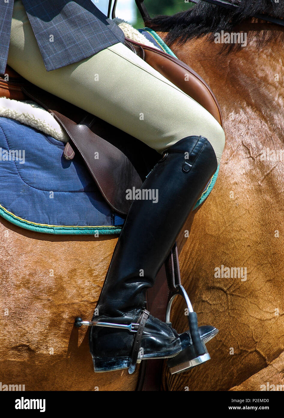 Female Equestrian With Elegant Black Riding Boots And Spurs Stock Photo Alamy