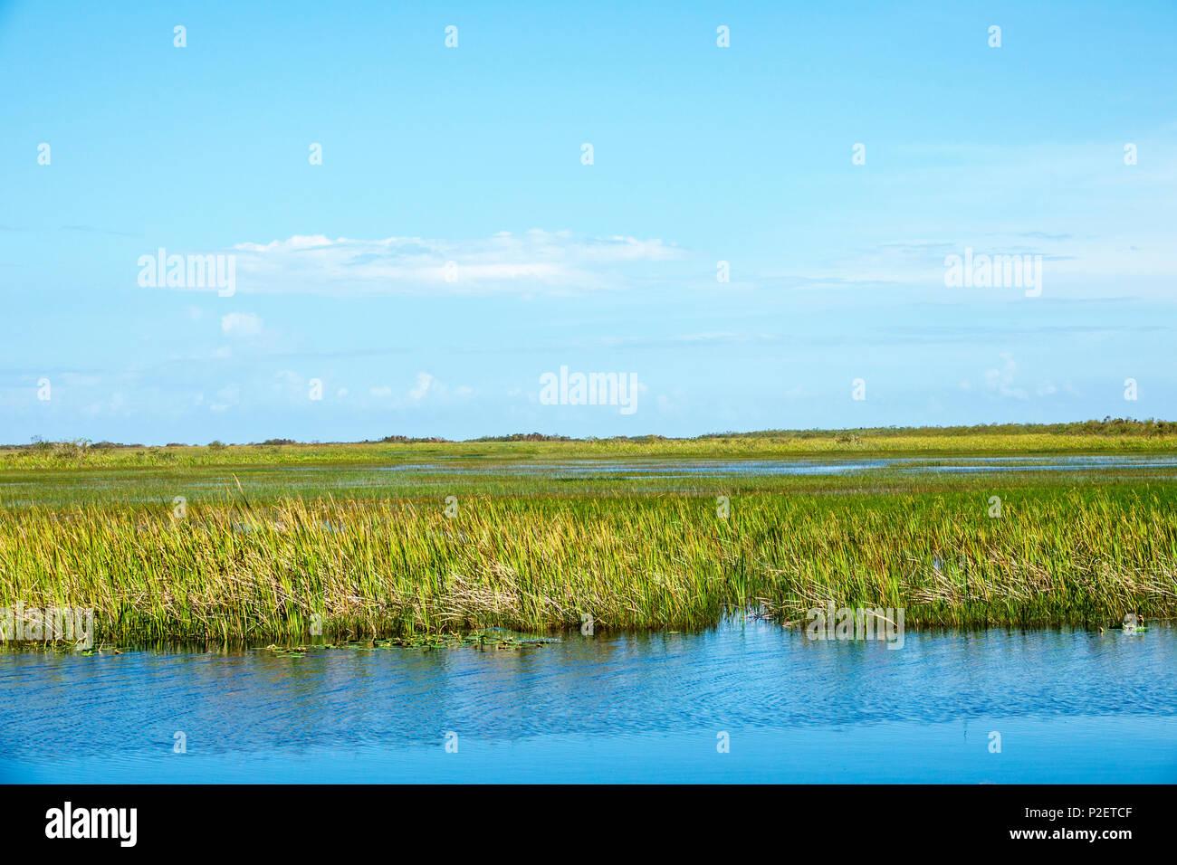 Florida Everglades Us Route 41 Stock Photos Amp Florida