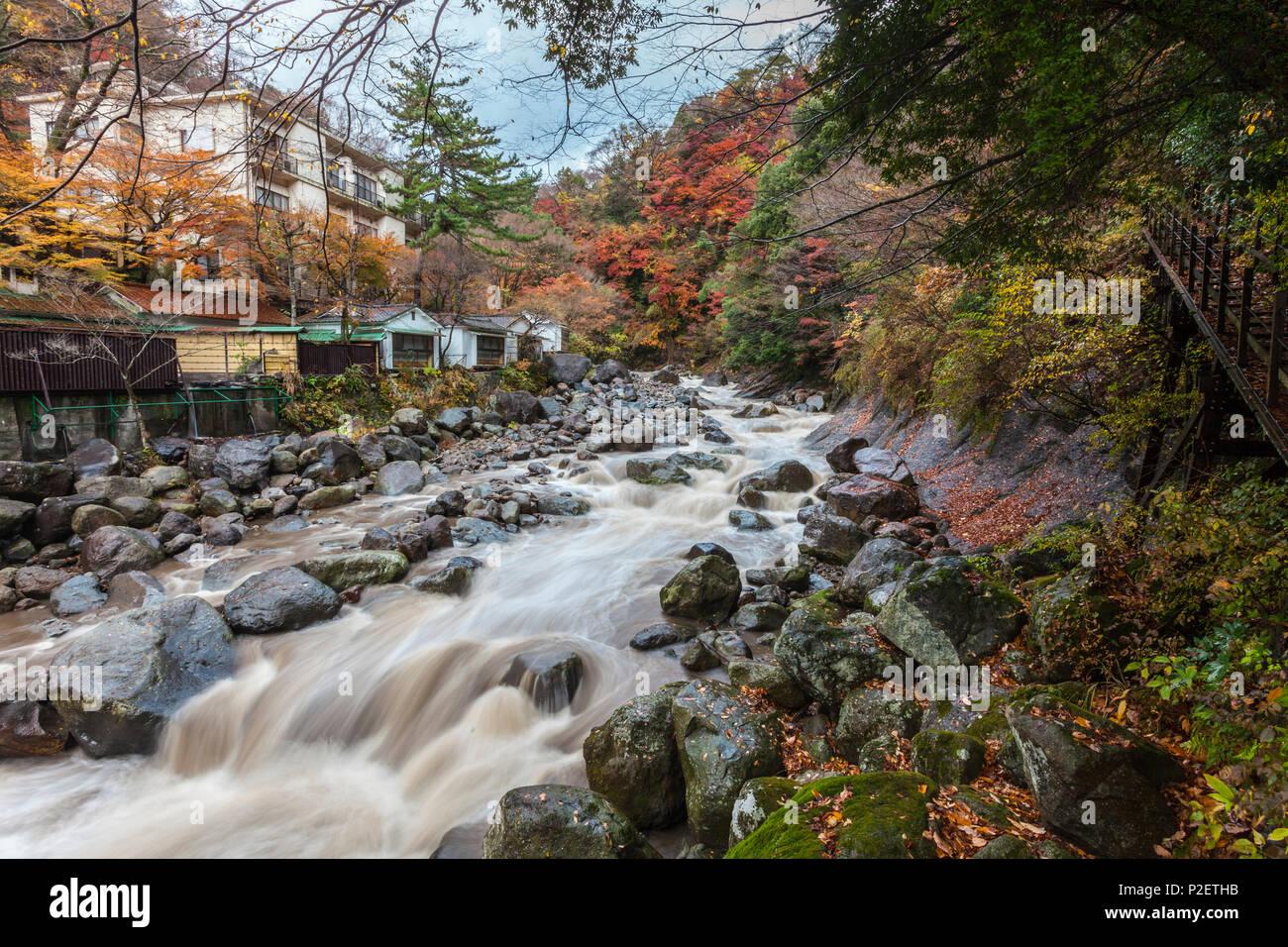 Wild mountain stream in autumn at Miyanoshita, Kanagawa Prefecture, Japan - Stock Image