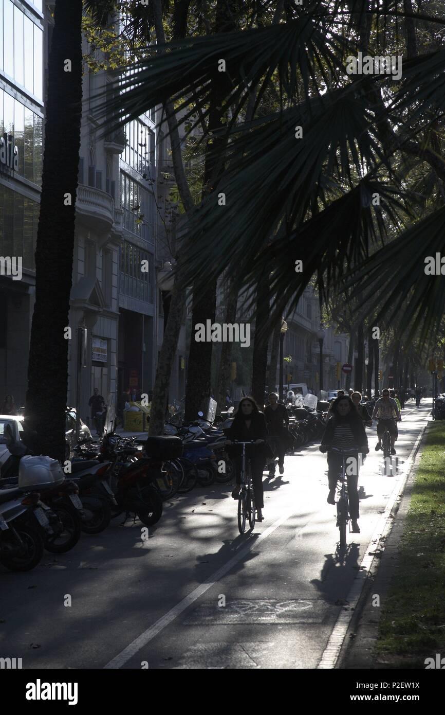 SPAIN - Catalonia - Barcelonés (district) - Barcelona. Barcelona; carril de bicis en la Diagonal a la altura de Balmes. - Stock Image