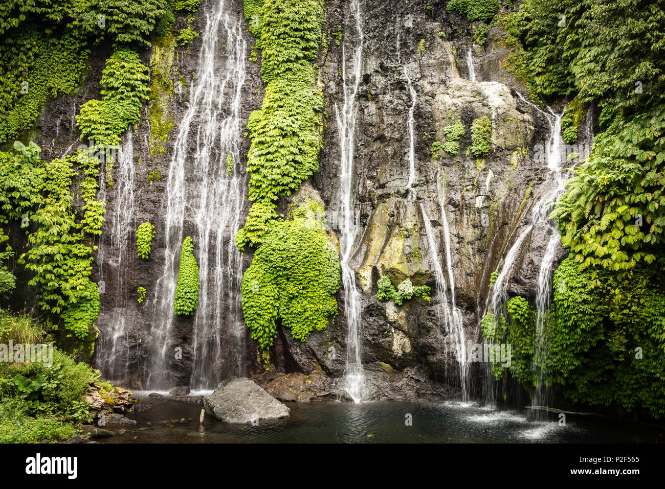Waterfall trickle with thick vegetation - Indonesia, Java - Stock Image